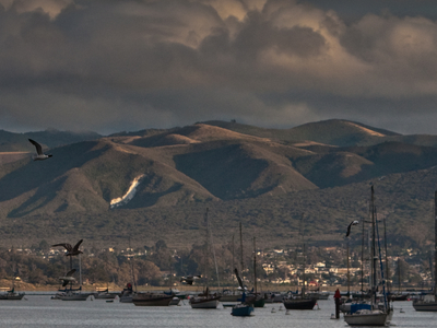 View Of Los Osos From Morro Bay Harbor