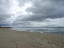 View Of Monterey State Beach