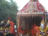 View Of Rath Yatra