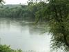 View Of The  Dan  River  Danville  Virginia
