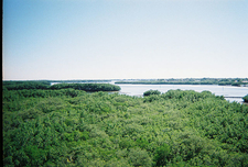 View Preserve From Observation Tower