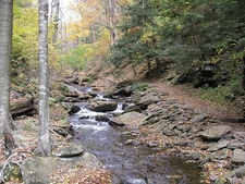 Views Along Ricketts Glen State Park Waterfall Trail - Pennsylvania