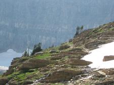 Views From Siyeh Pass Trail - Glacier - Montana - USA