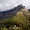 Table Mountain & Cape Town Half-Day Trip