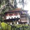 View Taktsang From Behind Trees