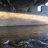 View Under The Market Street Bridge - Harrisburg PA