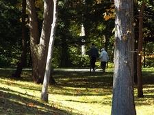 View Wildwood Preserve - Toledo OH