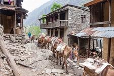 Village Along Manaslu Circuit - Nepal Himalayas