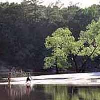 Village Creek SP