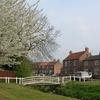 Village Green And Beck Wilberfoss