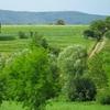 Villany-Siklos Wine Road