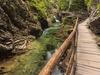 Vintgar Gorge With Green River