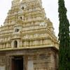 Viranarayana Temple