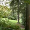 Viretta Park