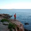 Visitor Over Otter Cliffs - Acadia ME