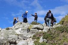 Visitors At Cape Point Nature Reserve SA