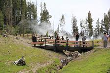 Visitors At Mud Volcano - Yellowstone - USA