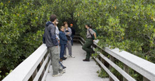 Visitors With A Ranger Along The West Lake Trail