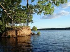 Volga River Backwater