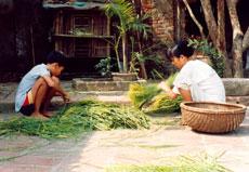 Vong Village
