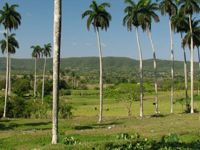 Valley Camajuani