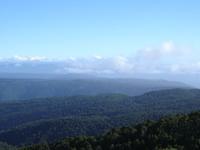Cordillera de la Costa de Chile