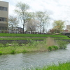 Chitose River