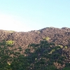 Negro Montaña (Kalkajaka) Parque Nacional