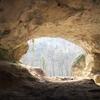 Peștera Cu Oase