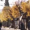 Classical Capilla Del Señor Street