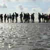 Mar de Wadden