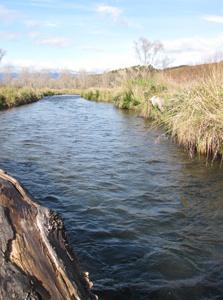 Waiotaka River - Tongariro National Park - New Zealand