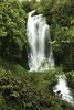 Waitanguru Falls Walk - Whanganui National Park - New Zealand