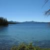 Waldo Lago