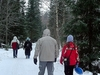 Walking In Snowy Forest - Vaasa Finland