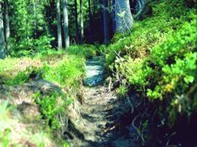 Wallweg Umhausen Austria