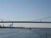 Walt  Whitman  Bridge