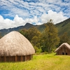 Wamena Traditional Huts