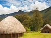 Wamena Traditional Huts