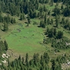 WA Mt. Rainier NP - Mist Park