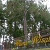 Wanawisata Bosque