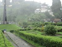 Batasia Loop