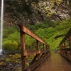 Warrendale - Bridge Near Elowah Falls