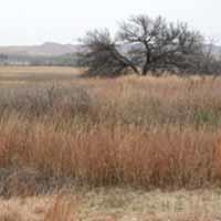Washita Battlefield