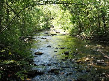 Watab River