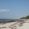 Watamu Beach 2 C Kenya