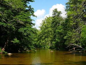 Río Watauga