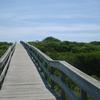 Watch Hill Boardwalk