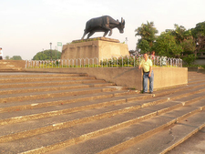 Water Buffalo - Rizal Park