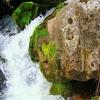Waterfall At Lake Teletskoye